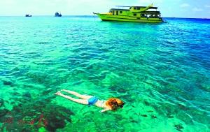 """游客太多环境遭破坏 泰国关闭""""最美岛屿"""""""